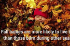 Five Fun Fall Facts To Celebrate The Harvest Season