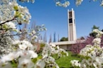 BYU to Offer Amnesty for Students Who Report Sexual Assault