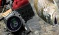 Olympus Stylus TG-3: Hartgesottene Outdoor-Kamera