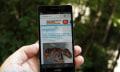 In aller Stille: Huawei stellt das Ascend P6 S vor