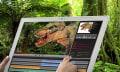 Panasonic 20-Zoll 4K Tablet: sündhaft groß, sündhaft teuer