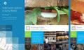 Microsoft usará datos de Foursquare en Bing y Windows
