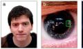 Los reflejos en un ojo podrían ser utilizados para identificar criminales
