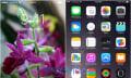 Erst die Watch, dann der Rest: Apple plant neuen System-Font