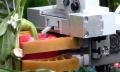 EU-Projekt CROPS: Roboter ernten Trauben und Paprika