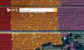 Bing sigue a Google y te permite ya el derecho al olvido