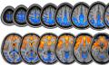 NASA studiert jetzt Gehirne im All