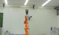 Catch me if you can: Roboter fängt Objekte in fünf Hundertstel Sekunden