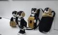 RoboHon: Sharps Smartphone-Roboter kostet ein kleines Vermögen