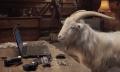 Video: TomTom bringt Action-Cam und Ziege auf die Piste