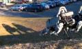 Video: Roboterhund wird getreten, rennt über Treppen und Wiesen