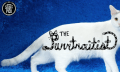 The Purrtraitist: Doku über einen Profi-Katzenfotografen