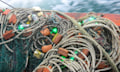 LEDs können Meeresschildkröten vor Fischnetzen warnen