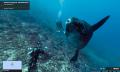 Unterwasser-Street-View: Google taucht ab (und verfolgt Fischfangflotten)