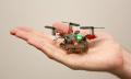 Miniroboter Picobug kann krabbeln, fliegen und greifen (Video)
