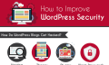 Infografik: Wie man Wordpress (halbwegs) sicher hält