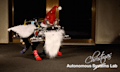 Video: Autonomous Christmas Lab 2014