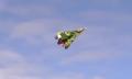 Árboles voladores, o cómo los drones Amazon podrían repartir en Navidad