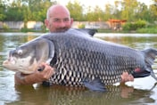 British holidaymaker catches the world's biggest carp