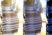 What colour is this dress? White and gold or black and blue?