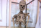 Dead headmaster lives on in his classroom - as a skeleton