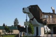誰得だよwww 犬の体内で眠った気分が味わえる(?)世界最大の「犬ホテル」が話題に【動画】