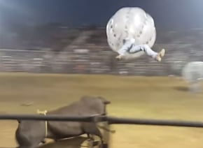 猛牛vsバルーン人間!闘牛士とウシのぶつかり合いが過激バカすぎるwww【動画】