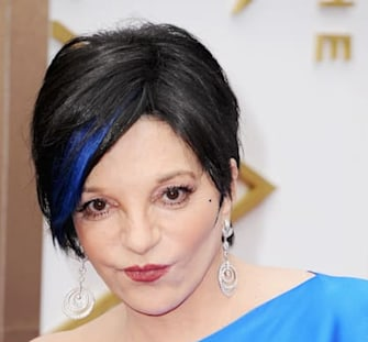 Liza Minnelli's shocking hair at the Oscars