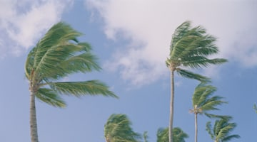 Tropical Storm Darby nears Hawaii