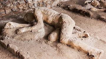 5 amazing archaeological discoveries preserved by nature: From Oetzi the Iceman to frozen woolly mammoths