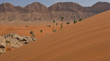 UAE looks into feasibility of a man-made mountain to stimulate rainfall in desert regions