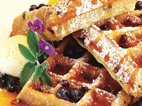 Maple Blueberry Malted Belgian Waffles with Maple Syrup and Fresh Whipped Cream