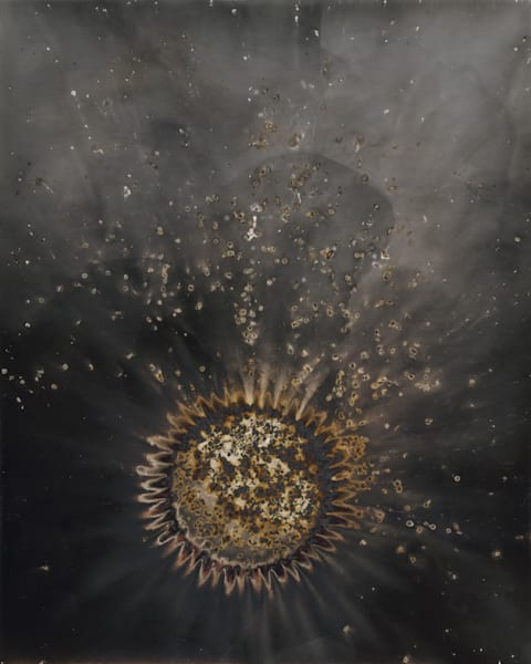 Untitled from Works of Fire, 2012. 10x8 gunpowder