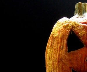 Tip Tuesday: How to Preserve a Carved Pumpkin