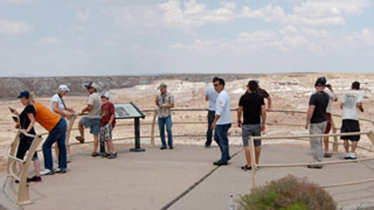 The Petrified Forest National Park