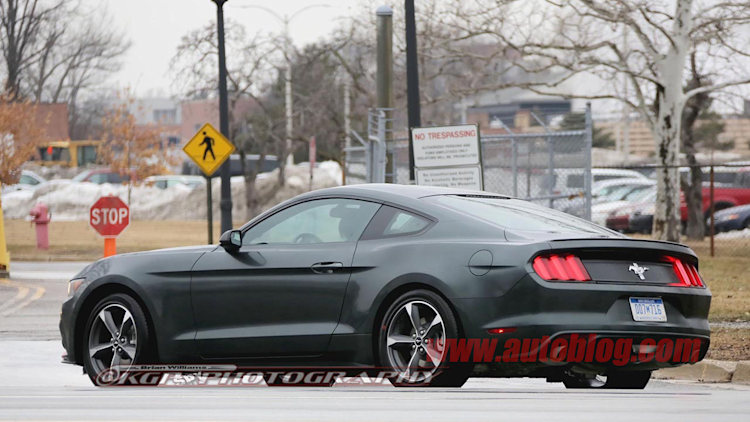 Are you Ford's next Bullitt Mustang? [w/poll] - Autoblog