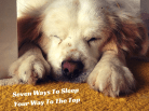 Why You Should Sleep Your Way To The Top