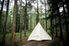 Denver Tent Creates A Healing Home In The Wilderness