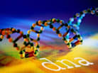 Thanks to GINA, Employers Can No Longer Use Your DNA Against You