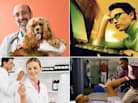 Top 10 Most Secure Jobs in 2011