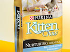 Now Hiring: Purina Cat Chow Correspondent