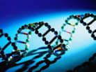 Genetic Discrimination: Can a Health Risk Put Your Job at Risk?