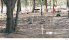 Pet Cemetery Plots for People Becoming More Popular in Texas