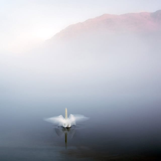 Landscape Photographers of the Year 2012