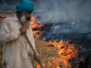 Delhi's Air Pollution Would Qualify As A Public Health Emergency