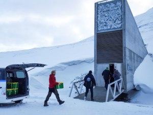 Arctic seed vault grows as defense against food crisis