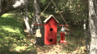 How to Make a Double Decker Birdhouse