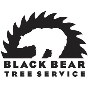 Black Bear Tree Service