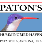 Paton's Hummingbird Haven logo