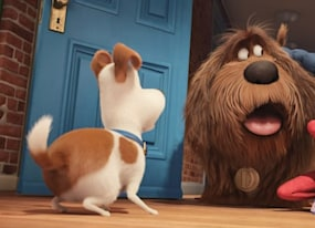 the secret life of pets family review 4 things every parent should know